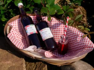 Bottles of Blackberry and Vanilla Cordial