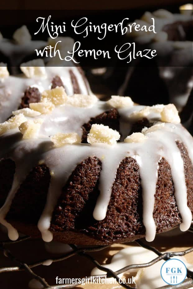 Sweet sticky gingerbread baked in a mini bundt tin with a tangy lemon glaze - perfect for Christmas and Holidays
