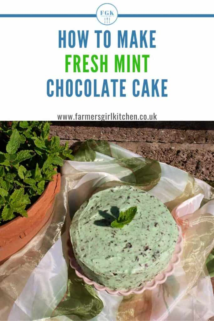 Fresh Mint Chocolate cake recipe