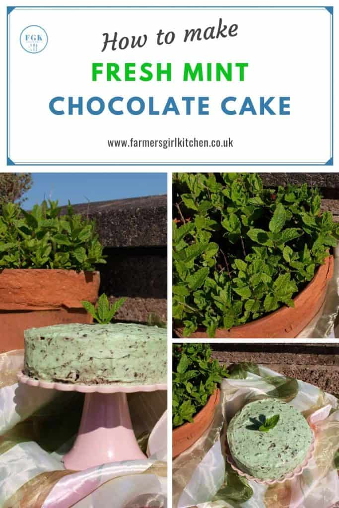 How to make Fresh Mint Chocolate Cake Recipe