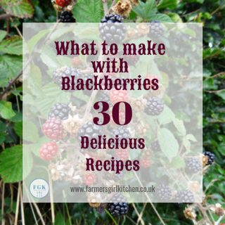 £0 Delicious Blackberry Recipes