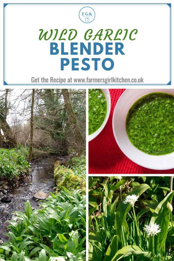 Wild Garlic and Pesto Recipe